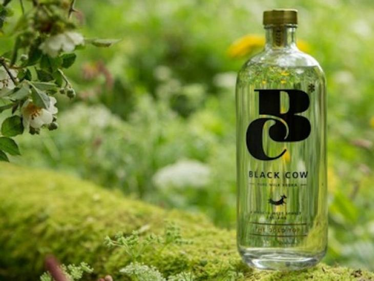 Black Cow Vodka i