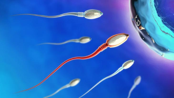 Οι στάσεις που αυξάνουν τις πιθανότητες εγκυμοσύνης